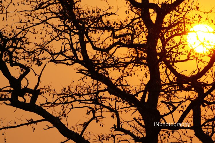 Sunset From darkness to light INphotography A Giving Journey watermark